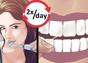 Oral hygiene Habits